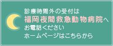 福岡夜間救急動物病院