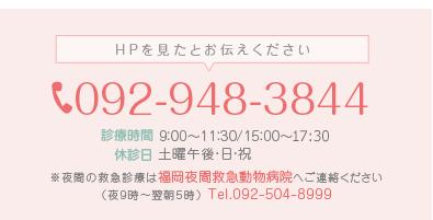 電話番号:092-948-3844