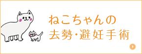 ねこちゃんの去勢・避妊手術